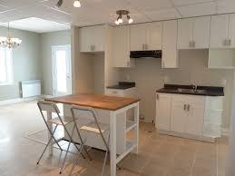 Basement Kitchen Ideas Small 78 Best Income Suite Images On Pinterest Basement Apartment