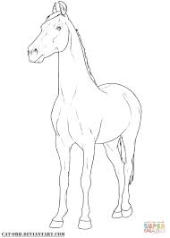 marwari mare coloring page free printable coloring pages