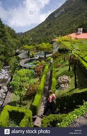 Botanical Gardens Highland Park Botanical Gardens At The Trout Farm In Ribeiro Frio Madeira Stock