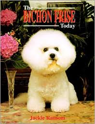 bichon frise therapy dog the bichon frise today jackie ransom 9781582451268 amazon com