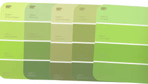 green color paint home inspiration ideas