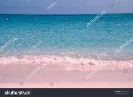 pink sand beach on harbour island stock photo 447571567 shutterstock