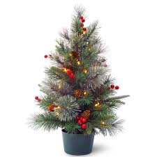 national tree company 24 in feel real colonial small wrapped tree