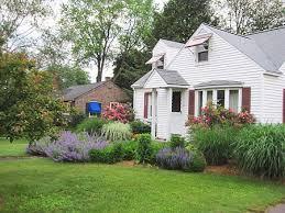 hilltown tree and garden portfolio perennials ornamental grass