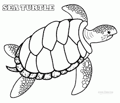 baby sea turtles coloring pages kids coloring