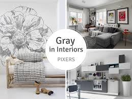 hacks and tips to decor your home with canvas prints from pixers gray interiors pixers