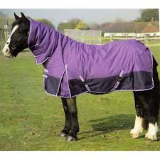 Outdoor Rugs For Horses Rug Home Design Ideas And Pictures
