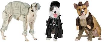 Indiana Jones Halloween Costumes Dog Halloween Costumes