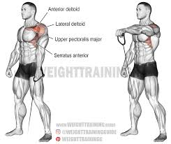 push archives page 3 of 10 weight training guide