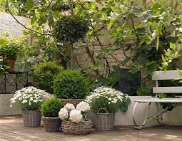 15 innovative designs for courtyard gardens hgtv 15 innovative designs for courtyard gardens hgtv inside courtyard