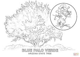 new mexico tree coloring page coloring home