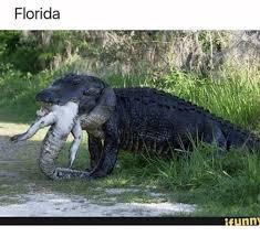 Funny Florida Memes - 25 best memes about florida funny florida funny memes