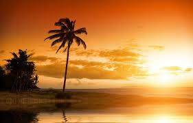 Hawaii scenery images Beautiful scenery sunset nature landscape sky clouds tropical palm jpg