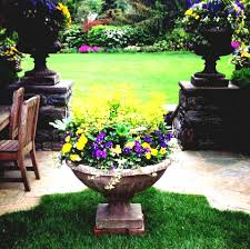 Fairy Garden Container Ideas by Plant Container Gardening Planting Ideas Broken Flower Pot Fairy
