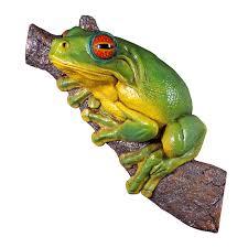 design toscano eyed tree frog statue reviews wayfair