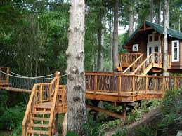 natural simple design of the custom tree houses can be decor with