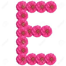 e flowers abecedario con flores letra e vocal el alfabeto con sus
