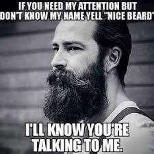 Facial Hair Meme - beard meme top 23 of funny beard memes