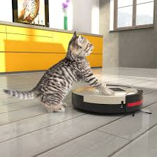 Best Vacuum For Dog Hair On Hardwood Floors What Is The Best Robot Vacuum For Pet Hair Robots Vacuum Cleaners