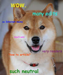 What Is Doge Meme - doge meme wikipedia