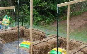 straw bale gardening great in all climates from the arctic to the
