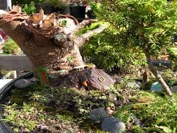 fairy garden ideas landscaping margarite gardens