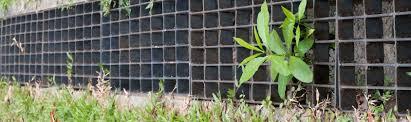 drainage systems springfield mo