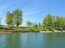 norris lake lots for sale