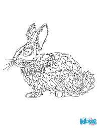 rabbit coloring pages hellokids com