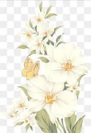white flower white flowers png vectors psd and icons for free pngtree