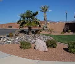 desert landscape design ideas home decorating and tips for front