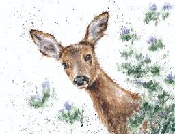 win this stunning deer print u2014 yours