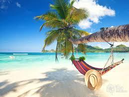 palm beach holiday u2013 benbie