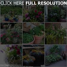 garden ideas for small yards christmas lights decoration