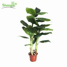 popular style artificial indoor ornamental banana plants for