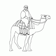 camel coloring pages for students preschool and kindergarten