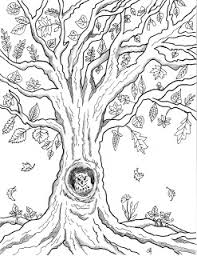 make it easy crafts free printable autumn owl tree coloring page