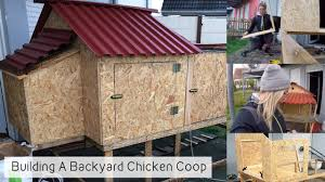 bikinis to chickens ii building a backyard chicken coop youtube