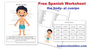 free worksheets parts of the body with additional form with free