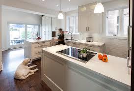Transitional Kitchen Ideas Transitional Kitchen The New Idea In Modern Look Kitchen