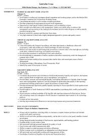 liquidity report template liquidity risk analyst resume sles velvet