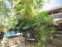 vacation rentals in kona vacation rentals kona big island