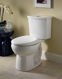 Paint Ideas Bathroom by Bathroom How To Replace And Install A Modern Toilet Lowes