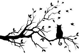 cat sitting on tree branch model photos pictures and