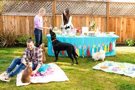 how to throw a birthday party u2026 for your dog brit co