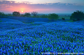 Oklahoma scenery images Oklahoma scenic landscape pictures jpg