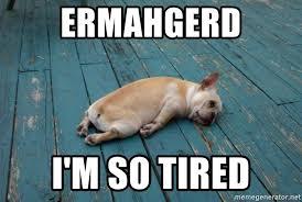 I M So Tired Meme - ermahgerd i m so tired tired dog meme generator