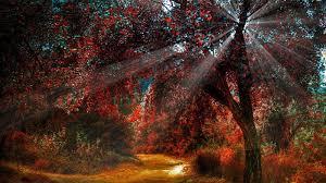 sun autumn landscapes light nature wallpaper allwallpaper in