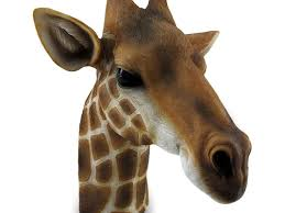 Giraffe Home Decor by Elegant Giraffe Home Decor