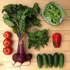 Gardening Vegetables For Beginners by Unique Easy Vegetables To Grow For Beginners Garden Design